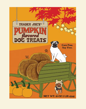 Pumpkin Spice Dog Treats